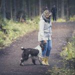 Kuinka kouluttaa koira joka ei karkaa 99% todennäköisyydellä